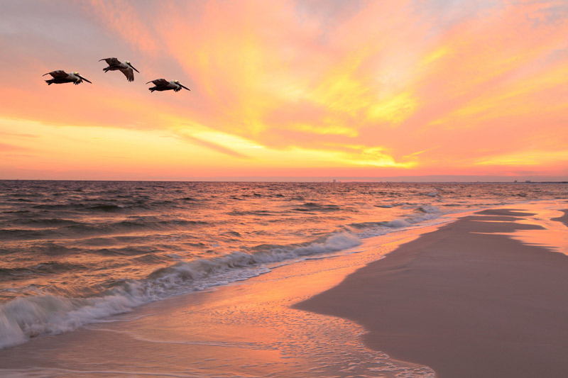 Sunset Beach Anna Maria Island The Best Beaches In World